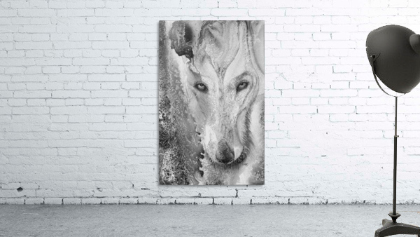 Illustration of a wolf and a mottled background