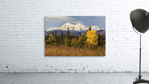 Denali, viewed from south of Cantwell, from the Parks Highway in Interior Alaska; Alaska, United States of America