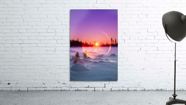 Sun flare glowing over a winter landscape; Trapper Creek, Alaska, United States of America