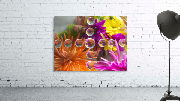 FLOWERS REFRACTION 16