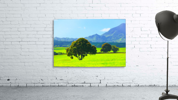 green tree in the green field with green mountain and blue sky background