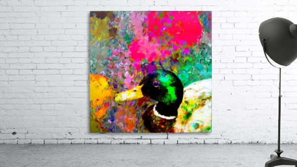 mallard duck with pink green brown purple yellow painting abstract background