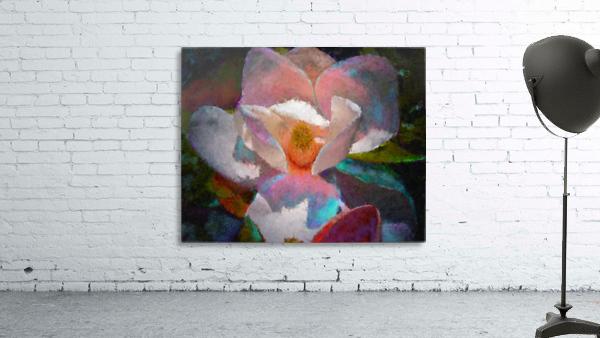 Magnolia Grandiflora Impression