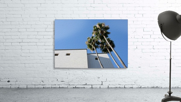 3 Palm Trees Next to Building