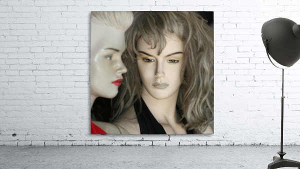Mannequin Dreams