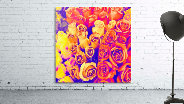 bouquet of roses texture pattern abstract in pink and white
