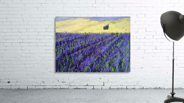 Purple Lavender fields painting