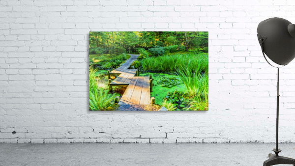 wooden bridge across a pond with duckweed and leaves of water lilies