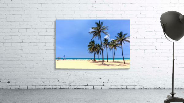 vacation on the beach on the hot Caribbean islands with green palms, yellow sand, blue sky