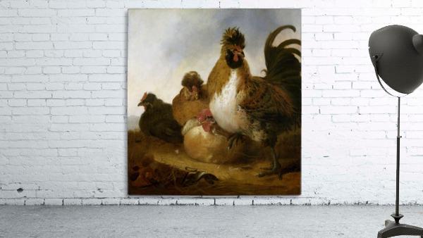 Aelbert Cuyp Rooster