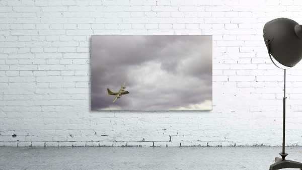 Flyingwarbird