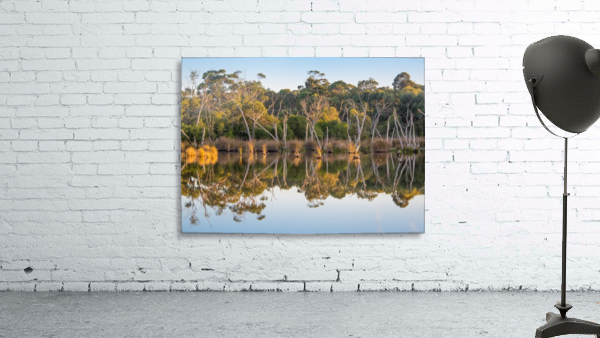 Evening river bank with glassy reflection