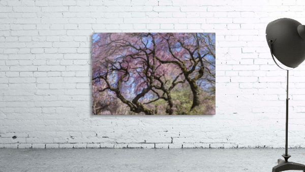 Abstract Cherry Blossom tree