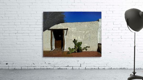 Cactus & Door