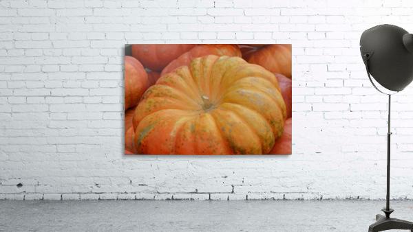 Beautiful Pumpkins Photograph