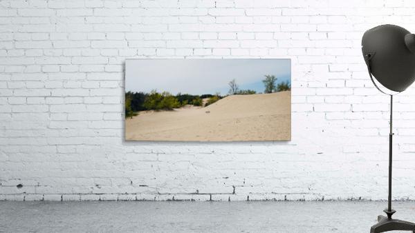 Sandbanks 1