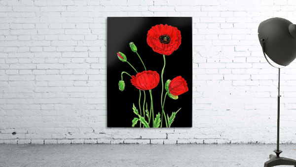 Red Poppy Flowers Watercolor