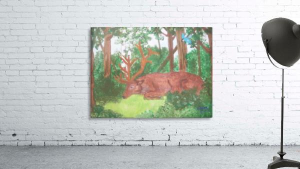 Maine Elk