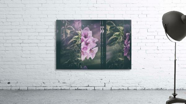 Bougainvillea Collage