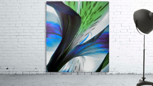 Vibrant Iris