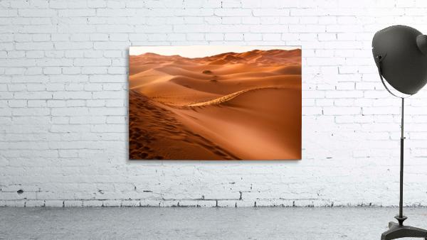 Beautiful Nature Landscape Hot Sun Desert Sahara Sand Dune Dunes Hot Climate Photography landscape photo Scenery