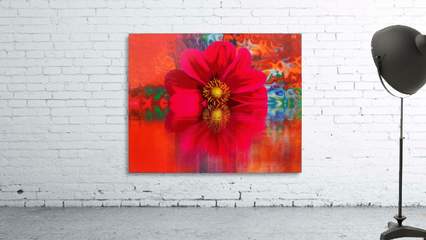 Beautiful colourful flower blossom flower background design floral home decor decoration