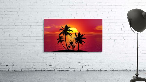 tropical 1651423