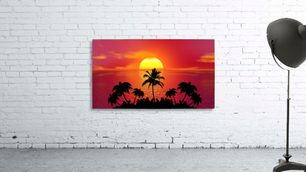 tropical sunset summer sun palm tree hot climate night