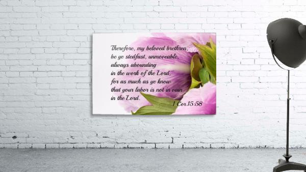 Be ye stedfast