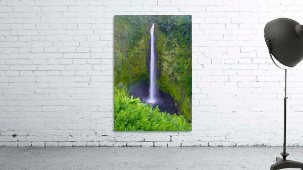 Tropical Falls - Hawaii Vertical