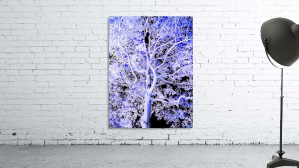 Art of a Violet Blue Tree