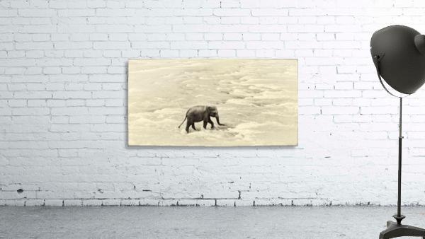 RIVER ELEPHANTS 5.