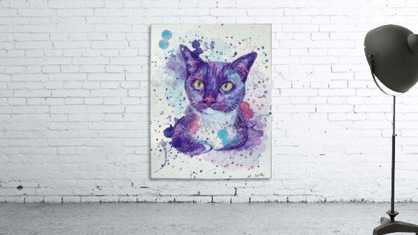 Tuxedo Cat - Portrait of Flash