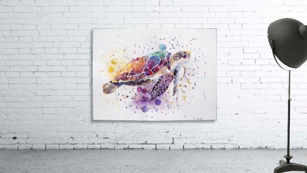 Rainbow Sea Turtle