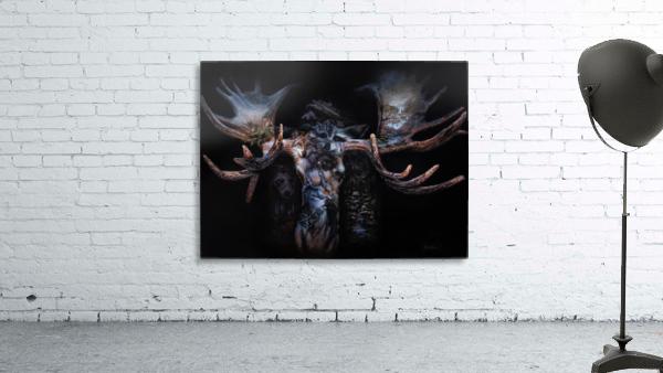Moose Apparition