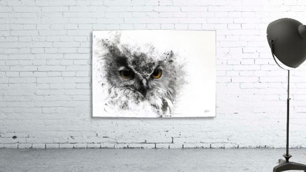 European Eagle Owl 01