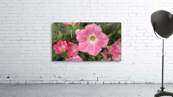 Flowers (86)