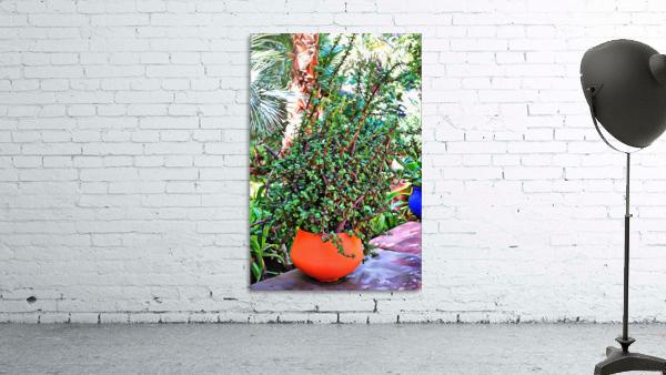 Colorful Plant Pots Marrakesh 10