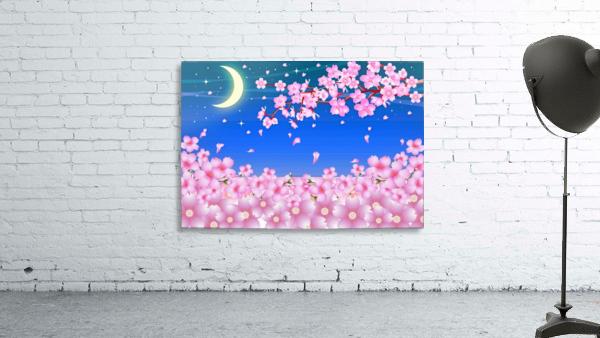 sakura cherry blossom night moon
