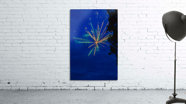 Fireworks 2019 8