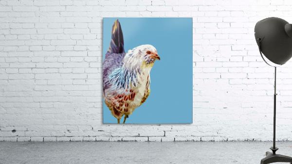 chicken pop art blue