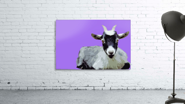 Goat popart purple