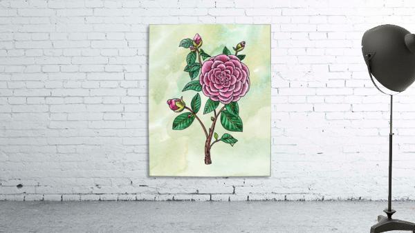 Botanical Watercolor Japanese Camellia Flower