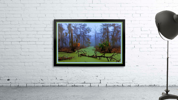 Jurassic Swamp  - HDR - Double Matted and Framed