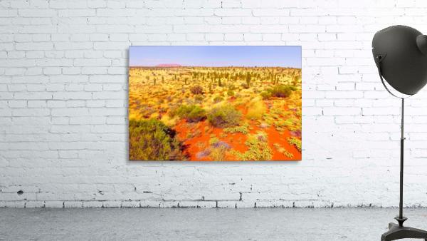 Dune Landscape - Central Australia