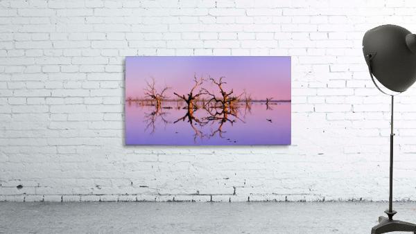 Twin Reflections - Pamamaroo Lake