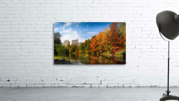 Fall colors in NY