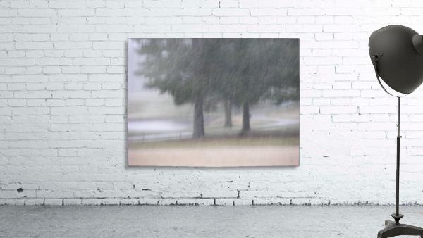 Soft Snow Fall Photograph