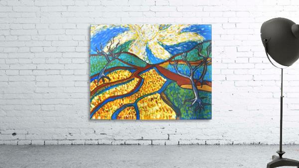 Jana A. Trees in the Sun