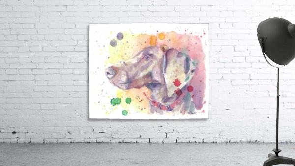 Weimaraner Dog - Portrait of Nandi